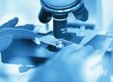 山东人工授精技术最好的医院应该怎样找?