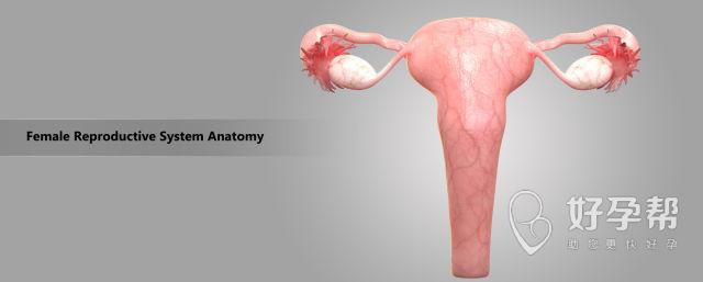 桂林人工受孕医院哪家专业?术前必须要做好这些准备!