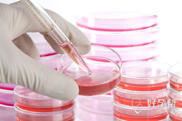宝鸡的哪所医院可以试管?试管会影响胎儿健康么?