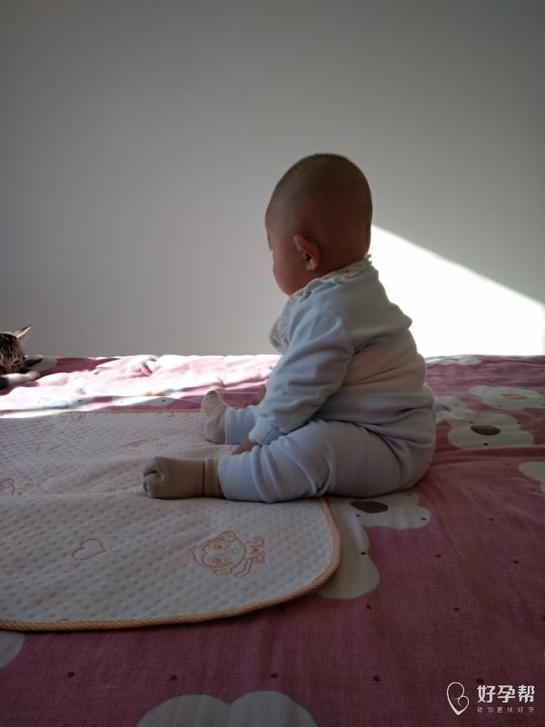 宝宝真棒,五个月半月了,稳稳的-其它-情感交流论坛-好孕帮