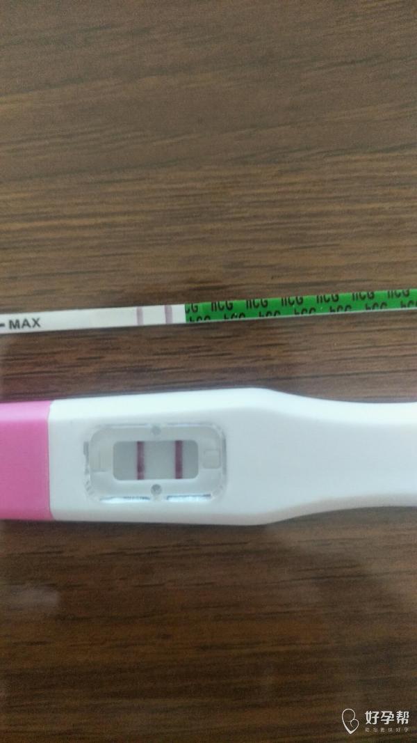 我怀啦 | 40岁二宝备孕3个月,成功✌