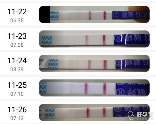 我怀啦 | 撒好孕啦!霉菌、子宫后位、月经周期长。。。都不是事!