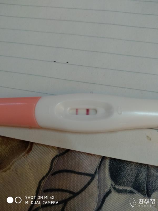 我怀啦 | 怀孕啦怀孕啦惊喜不断