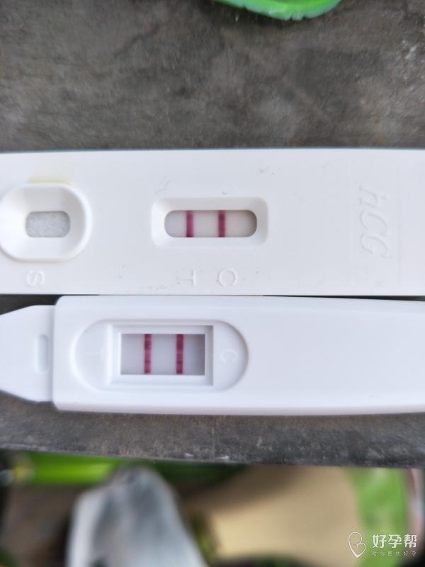 我怀啦   坚持不放弃,终于等到你-早早孕-好孕经验--好孕帮
