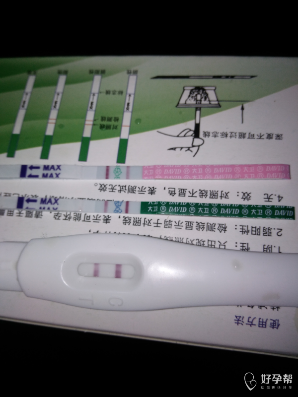 末次月经12.26。周期30-31天。这是怀孕了吗?-备孕心情-早早孕-备孕交流论坛-好孕帮