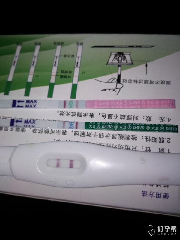 末次月经12.26,周期30-31天。这是怀孕了吗?-早早孕-备孕心情-备孕交流论坛-好孕帮