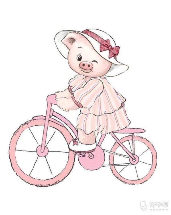 #2019年我的备孕计划#猪宝宝快快来