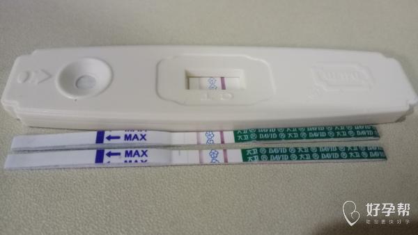 我怀啦 | 备孕五个月终于成功了