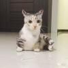 王琴-好孕帮用户