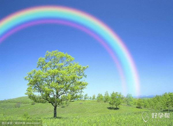 #我的胎停经历#等待雨后的彩虹--难孕治疗论坛-好孕帮