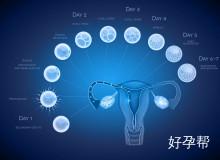卵巢功能好不好,要看3个方面正不正常?5招让你早预防!