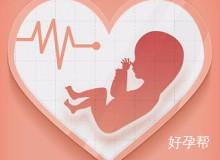 什么是胎心?