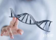 泰国试管婴儿医院-嗣道遗传与不育诊疗中心
