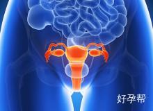子宫输卵管造影套餐(山东)