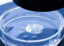 实验室专家面诊-北京海军总院