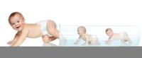 试管婴儿成功,都需要哪些必备条件?