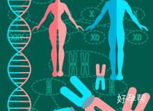 面对家族遗传病,怀孕时需要采取什么措施?