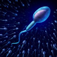 男性精子畸形做试管婴儿成功率大吗  精子畸形率高还可以做试管婴儿吗