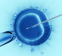 男性生育能力自我检查 怀孕能力早知道