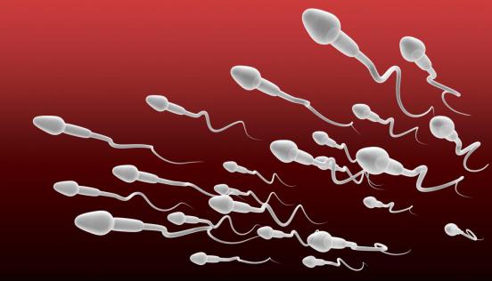 男性中度弱精症能怀孕吗?如果怀不上怎么治疗呢?